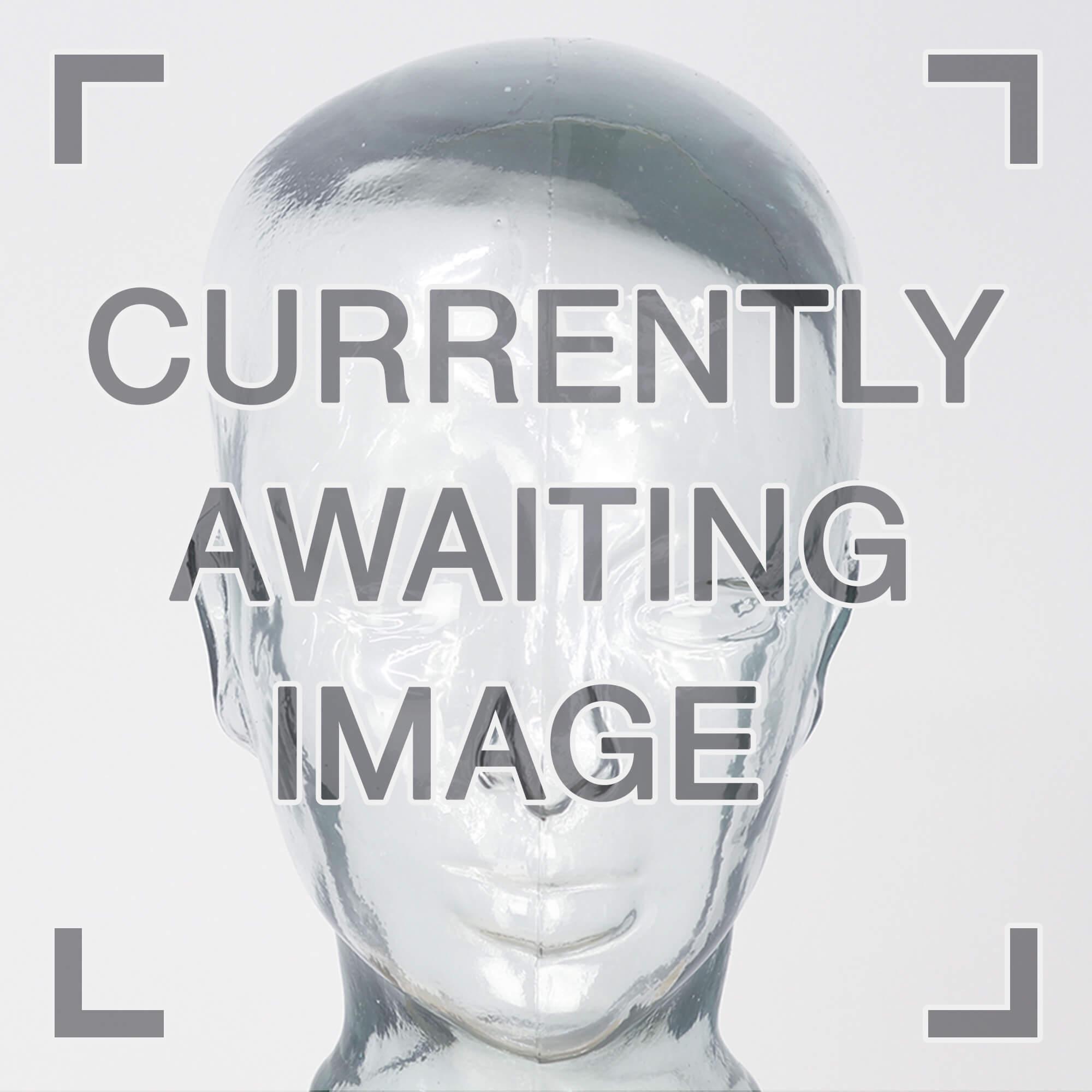 TT RR Integrated Amplifier